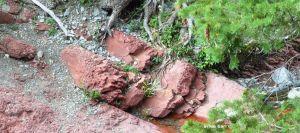 red rock canyon b
