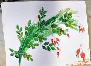 rosehips sketch