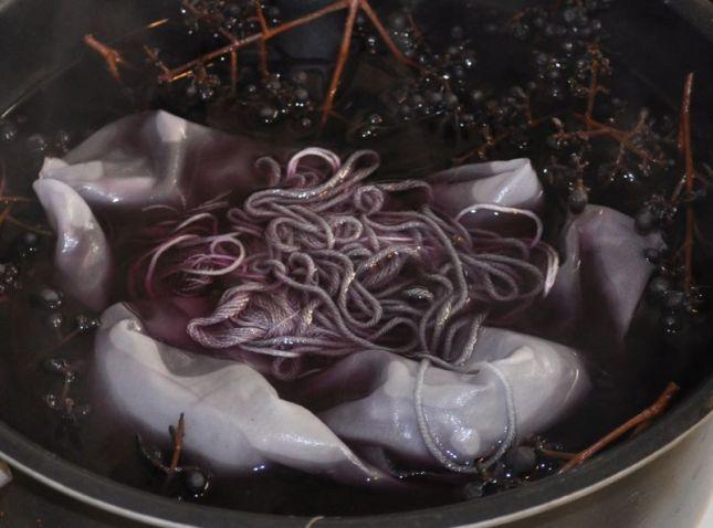 privet-berries-dyebath-a